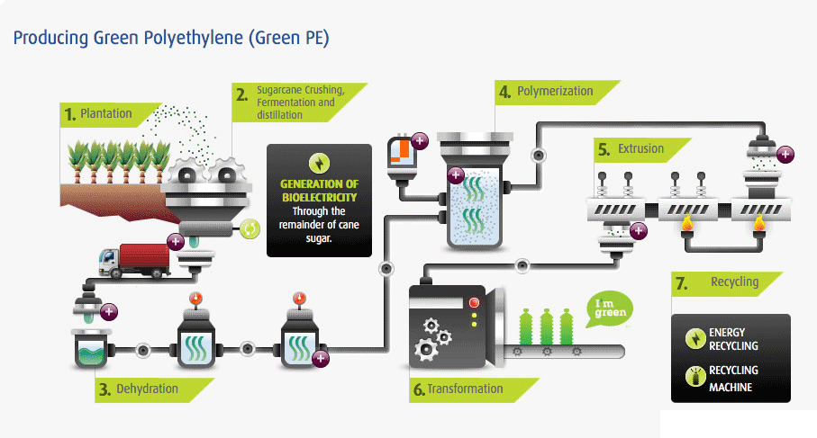 Producing Green Polyethylene (Green PE)